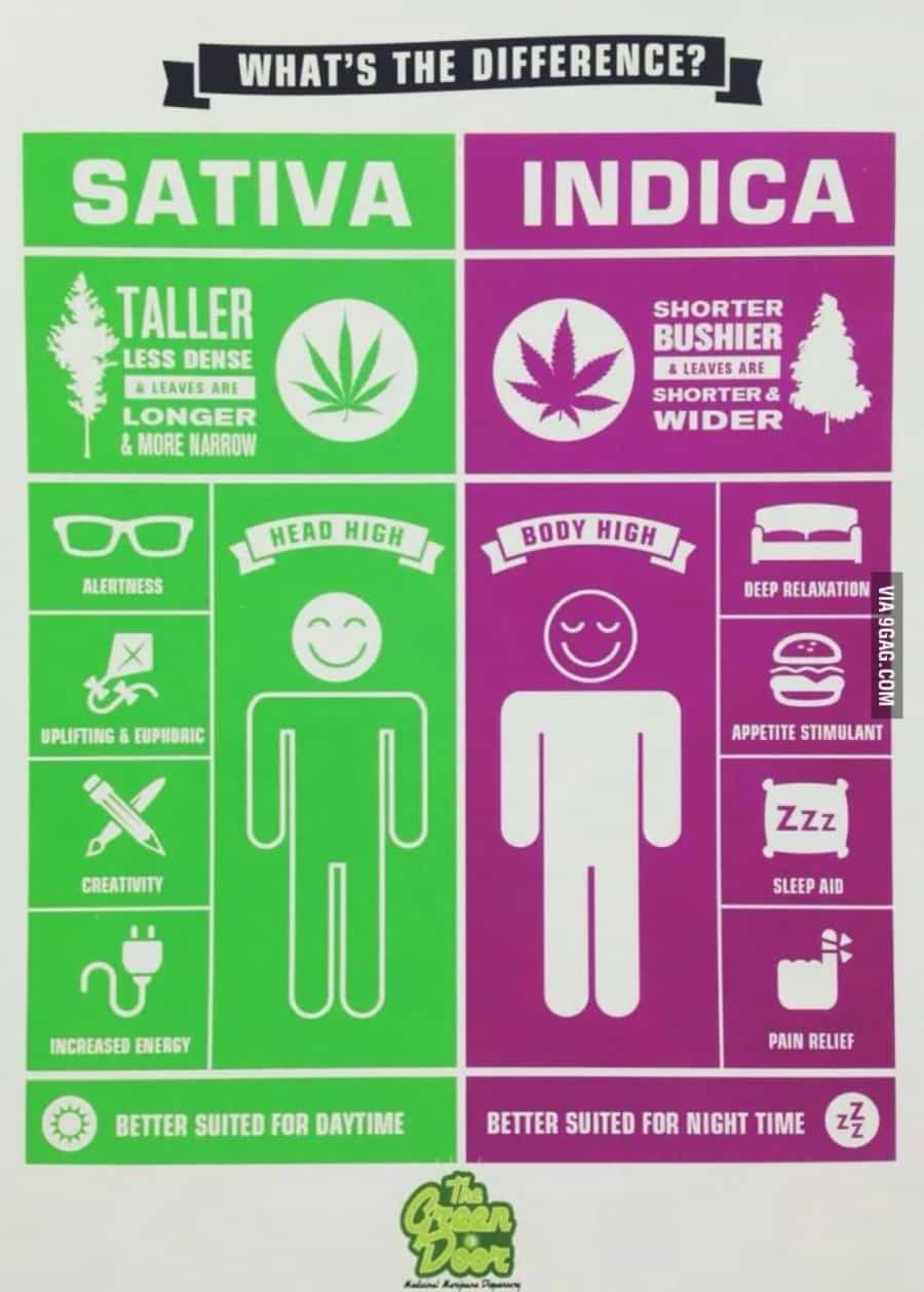 Chart Courtesy of The Weed Blog